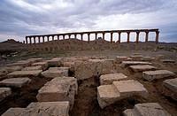 Great Colonnade. Palmyra. Syria