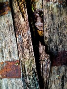 Old whiskey barrel wood, decaying.