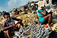 A Haitian woman sells dried fish in the La Saline market, Port-au-Prince, Haiti, 14 July 2008. Every day thousands of women from all over the city of ...