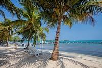 Belize, Placencia.
