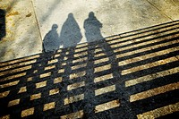 Shadows in the stairs at cantorial park