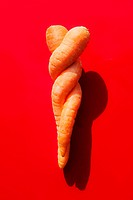 Intertwined carrots