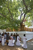 Mahar linden, those who visit a shrine, Anurardapra, Sri Lanka