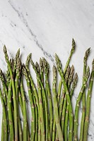 Asparagus officinalis is a spring vegetable, a flowering perennial plant species in the genus asparagus.