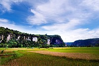 Harau Valley is in West Sumatra in Indonesia. It is one of the most beautiful natural scenery in West Sumatra. Located on the road between Pekanbaruan...