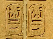 Ancient hieroglyphics on display outside Egyptian