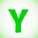 grass letter Y
