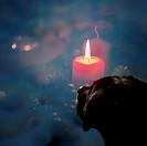 christmas candle for a labrador puppy