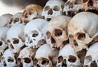 Skulls Displayed inside the Killing Fields ( Choeung Ek ) Memorial Site in Phnom Penh, Cambodia
