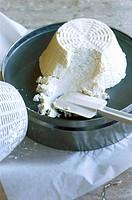 Freshly prepared ricotta cheese