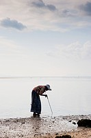 During low tide at Nathon Beach on Ko Samui, local women dig throught the sand to gather shellfish; Nathon, Ko Samui, Thailand
