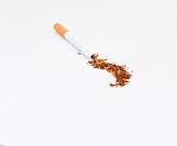 Broken cigarette showing tobacco spilled