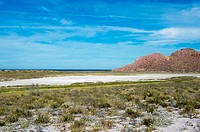 View of the salt pan with salt resistant plants on San Francisco Island in the Sea of Cortez in Baja California, Mexico.