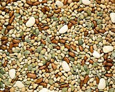 Selection of mixed dried beans.