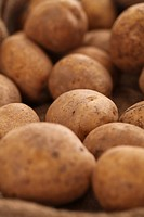 Closeup image of rustic fresh unpeeled potatoes on a wooden table