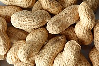 peanuts background macro close up