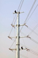 high voltage electric power steel tube tower