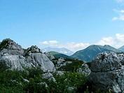 The main Caucasian ridge