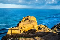 Rock formation at the Razor Point overlook above the ocean. Torrey Pines State Natural Reserve, San Diego, California, United States.