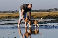 man and Beagle