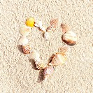 Stock Photo: heart made with shells on sand