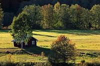 Idyllic Hut In Sweden