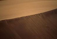 Sand dune, Arabian Desert, Dubai, United Arab Emirates.