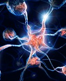 Network of neurons and neural connections, Brain cells, scientific illustration.