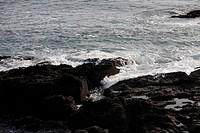 savage coastline