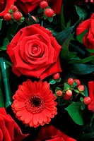 red flower composition, roses and gerberas