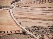 Farmlands, Alpuente, Valencia province, Comunidad Valenciana, Spain