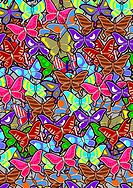 cover butterfly
