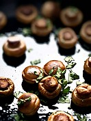close up of sauteed mushrooms