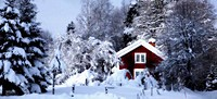 red cottage, snow and winter