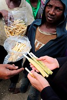 Africa, Ethiopia, Southern Ethopia, Young men, selling traditional tooth brush on the street in Arba Minch.