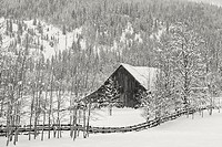 A black and white image of an old barn in a snowy field near Twin Lakes, Idaho.