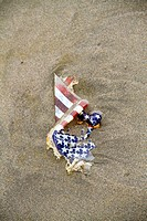 A damaged American flag on the beach.