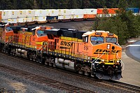 BNSF stack train at Scribner Siding, Marshall, Washington, USA.