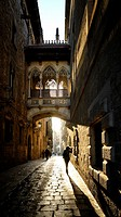 Spain, Catalonia, Barcelona, Barri Gotic (Barrio Gotico, Gothic Quarter), Carrer del Bisbe (Bishop´s street), neo-Gothic bridge Pont del Bisbe (Bishop...