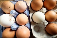White and brown organic eggs in cartons, with hen feathers
