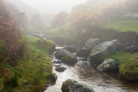 Mist over Aik Beck on Barton Fell in the Lake District National Park. Cumbria. England.