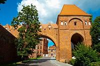 Zamek Krzyzacki, Teutonic castle, old town, Torun, Pomerania, Poland.