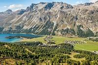 Summer landscape, Lake Sils, Upper Engadin, Switzerland.