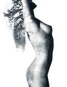 Fine art nude artwork of beautiful naked woman body with nature pattern of trees and leaves double exposed on it, isolated on white background.
