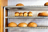 Artisan Freshly Baked Bread Displayed on a Metal Wired Shelving Unit, in an old time bread bakery.