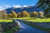 Cumbrian landscape near Nether Wasdale, Lake District National Park, Cumbria, England, United Kingdom, Europe.