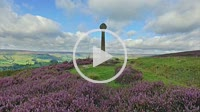 Stone Cross overlooking Rosedale with flowering heather - North Yorkshire Moor National Park, England