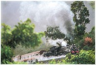 An old steam engines hauls it's passenger coaches through a forest.