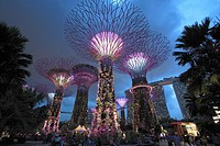 Singapore, Gardens by the Bay, Supertree Grove,.