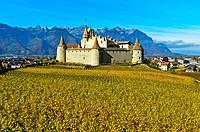 Vine and wine museum Aigle Castle, Chateau d'Aigle, Aigle, Vaud, Switzerland.